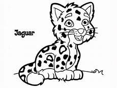 Animals Coloring Jaguar Animal Facts