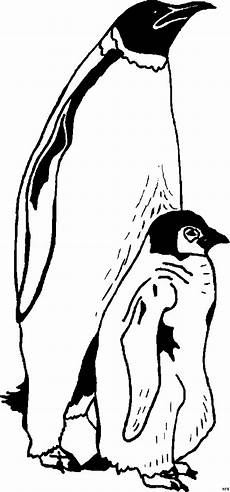 pinguin mit baby ausmalbild malvorlage tiere