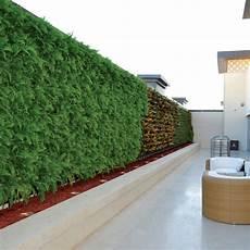 Vertical Green Green Walls Mini Vertical Garden Live Amp Artificial Walls
