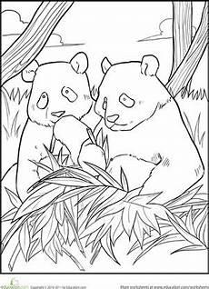 malvorlagen dino panda kinder zeichnen und ausmalen