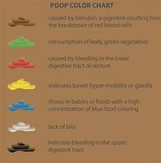 Stool Color Chart Human The 25 Best Stool Color Chart Ideas On Pinterest Chairs
