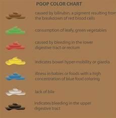 Infant Bowel Movement Color Chart Color Chart Nursing Urine And Stool Pinterest