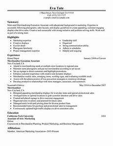 Problem Solving Skills Examples Resume Merchandising Execution Associate Resume Examples Created