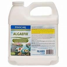 Algae Control Api 169d Pondcare Algaefix 64 Oz Pond Algae Control Algea
