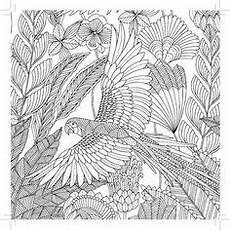 Vogel Malvorlagen Word Schmetterling Im Muschelwald De B 252 Cher Vogel