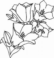 Window Color Malvorlagen Blumen Window Color Vorlagen Blumen Malvorlagen