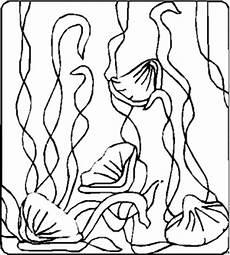 bild algen ausmalbild malvorlage blumen