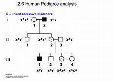 Pedigree Chart For Free Or Attached Earlobes Chapter 2 Single Gene Inheritance Flashcards Quizlet