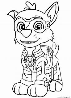 Malvorlagen Paw Patrol Rocky Paw Patrol Mighty Pups Rockys Coloring Pages Printable