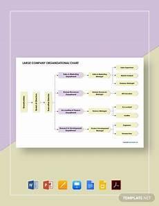 Large Company Organizational Chart Company Divisional Organizational Chart Template Word