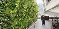 Vertical Green Green Wall What Is It And How To Build One Your