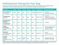 Allegra For Dogs Dosage Chart 12 Best Training Videos Images On Pinterest Training