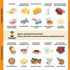 Most Protein Food Chart How To Increase Your Metabolism Naturally 10 Proven Ways