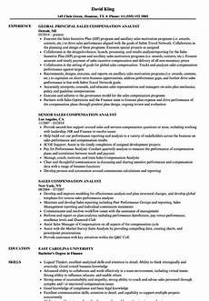 Compensation Analyst Resumes Sales Compensation Analyst Resume Samples Velvet Jobs