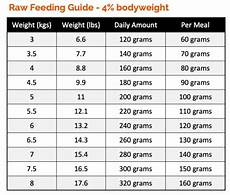 How Much To Feed A Cat Chart How Much Raw Food To Feed A Cat Check Our Cat Feeding Guides