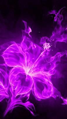 live flower wallpaper iphone purple flower wallpaper iphone 2019 live wallpaper hd