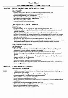Database Management Resume Strategy Project Manager Resume Samples Velvet Jobs