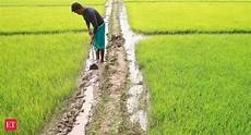 Crop Pricing Cacp Proposes Scheme For Crop Pricing To Directly Benefit