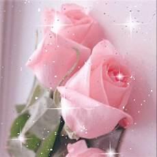 flower wallpaper live beautiful roses live wallpaper flowers