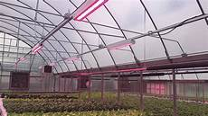 Led Lights Greenhouse The Latest Innovations In Greenhouse Lighting Greenhouse