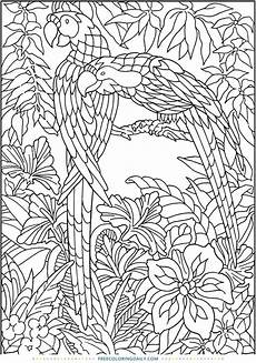 free jungle coloring page free coloring daily