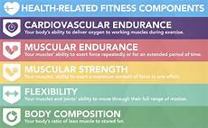 Words Related To Fitness Health Related Components Of Physical Fitness Mr Goldie