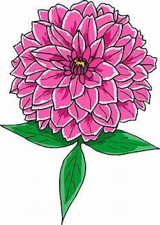 flores rosa hd desenhoswiki