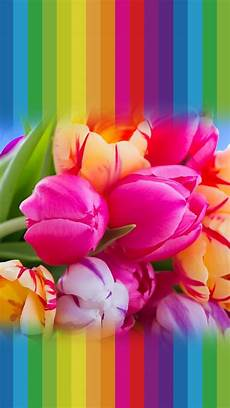 phone flower wallpaper apps tap and get the free app lockscreens creative flowers