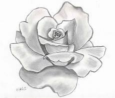 Drawings Of A Flower Awesome Flower Drawings We Need Fun