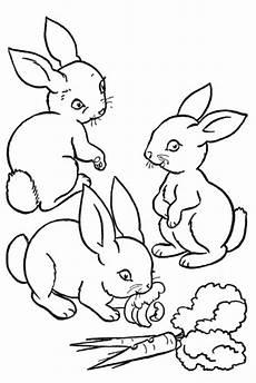 Malvorlagen Hasenohren Hasen Ausmalbilder Kostenlos Malvorlagen Windowcolor Zum