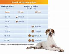 Previcox Dosage Chart For Dogs Easy Dosing Smart Design Previcox 174 Project Merial