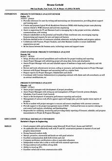 Project Analyst Resume Sample Project Controls Analyst Resume Samples Velvet Jobs