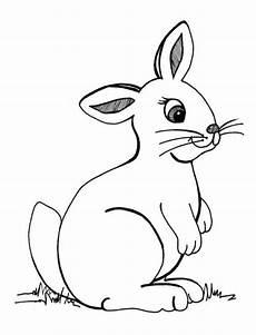 Malvorlagen Hase Hase Zum Ausmalen Newtemp