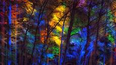 4k Nature Wallpaper For Mobile 1920x1080 by Wallpaper 3840x2160 Forest Trees Colorful