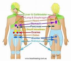 Referred Back Chart Visceral Manipulation Organ Mobility