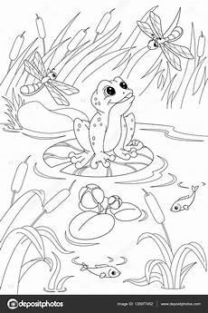 malvorlage frosch im teich coloring and malvorlagan