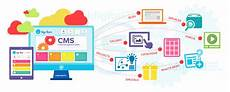 Database Management Systems Designing And Building Business Applications Pdf Benefits Of Using Cms For Your Business Website Whyte