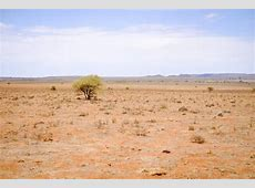 South Africa?s worst drought since 1904 ? this is what it