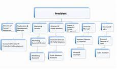 In Company Chart Company Chart Epeikon