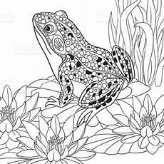 Zoomania Malvorlagen Ru Stylized Frog Sitting Among Lotus