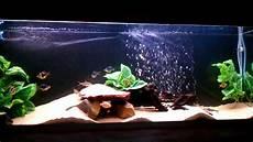 3 Foot Fish Tank Light New 4 Foot Tropical Fish Tank Youtube