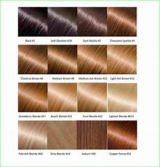 Smartstyle Hair Color Chart Olia Hair Color Chart 1246 Hairstyles Chestnut Brown Hair