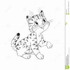 Malvorlage Katze Getigert Kitten Coloring Page Stock Illustration