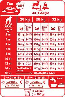 Puppy Food Chart By Age Dalmatian Junior Dog Food Royal Canin 174