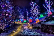 Indiana Pa Light Up Night Christmastown At The Museum Creation Museum