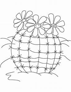 Cactus Plant Coloring Pages Flowering Cactus Plants Coloring Page Free