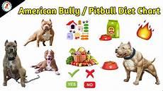 Labrador Puppy Food Chart India Labrador Puppy Diet Chart India In Hindi Cara Diet Cepat