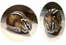126 best pebbles and stones chipmunk images on