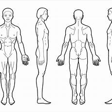 Outline Of Human Body Front And Back Body Diagram For Professional Chart Front Back