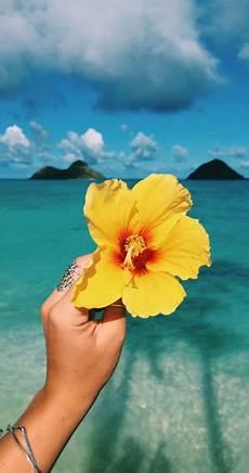 Flower Wallpaper Loading by Hawaian Flower